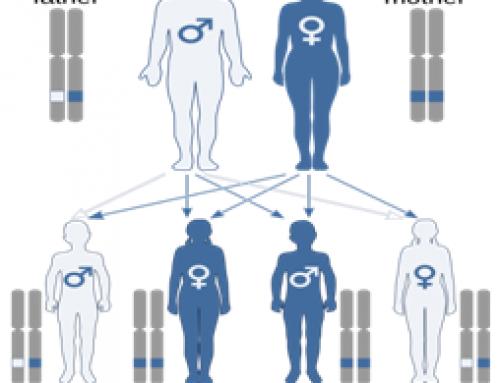Μυοπάθεια τύπου Central Core Disease
